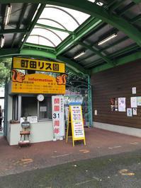 町田リス園 - 毎日徒然良い加減
