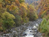 定山渓の紅葉 - 小さなお庭のある家3