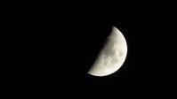上弦の月 - おうちやさい