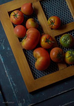 柳沢ファームの高糖度トマトはスーパーデリシアで♪ - きれいの瞬間~写真で伝えるstory~