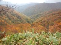 雨、ガス、薮、そして紅葉の三国岳 - 山にでかける日