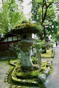 苔のむすまで・・・平泉寺白山神社 - いつもの空の下で・・・・