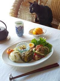 高菜おむすび、豚肉の生姜焼きの和ンプレート♪ - キッチンで猫と・・・
