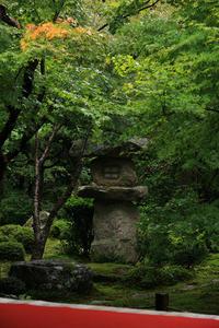 染まり始めた圓光寺 - 花景色-K.W.C. PhotoBlog