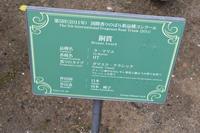 越後丘陵公園続きです。 - Nyanco32's Blog