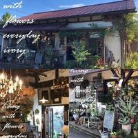 最高のお天気 -  Flower and cafe 花空間 ivory (アイボリー)