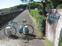 久しぶりの自転車&ダム巡り - 自転車走行中(じてんしゃそうこうちゅう)