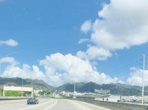 ハワイでUFO!? とレモンエゴマ - ハワイ 時々湘南