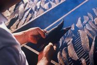 日本橋髙島屋にて「第41回グルメのための味百選」 - かつおの天ぱくブログ