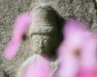 石仏奈良県 - ty4834 四季の写真Ⅱ