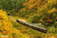 秋の汽車 - 汽笛の風景