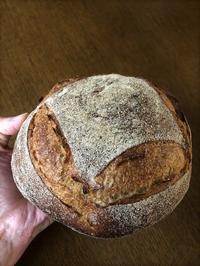 いつものカンパーニュ - slow life,bread life