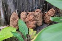 敷地内の粘土でひとひねり - 福島県南会津での山暮らしと制作