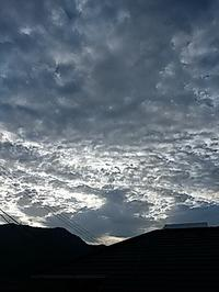 水曜の朝 - hanasdiary.exblog.jp