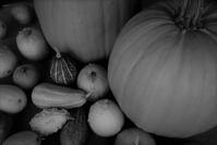 Halloween - フォトな日々