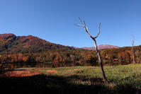 糸魚川市お昼時の蓮華白池の紅葉前半 - 日本あちこち撮り歩記