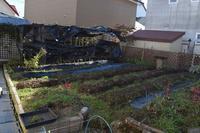 自然栽培庭の畑の仕舞い作業が完了 - 自然栽培 釧路日記
