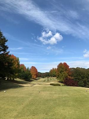 バースデーゴルフ - oggi fa bel tempo!