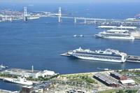 横浜港客船入港スケジュール公開を再開でも・・・ - カメラと会いに行く