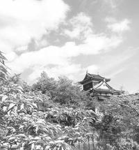 ちんゆい公式サイト復旧作業中 - 駅マエクラフト 奈良ノ空カラ