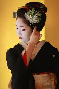 先笄・黒髪(祇園甲部・小花さん) - 花景色-K.W.C. PhotoBlog