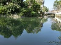 柳川は世間から切り離された町のようだった・・ - いわんやブログ