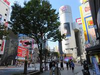 10月29日㈭の109前交差点 - でじたる渋谷NEWS