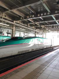 勝手に紅葉ツアー2020十和田湖編 - 愛犬家の猫日記