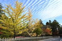 初秋の高野山そして龍神温泉 - 足る