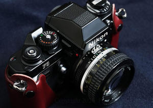 いいねの数だけ好きなカメラを答える <その4> -