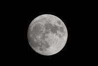 あしたは満月です - ささつぶ