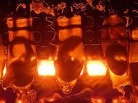 名古屋港水族館:深海ギャラリー③~トラザメの卵とクラカケザメ(December 2019) - 続々・動物園ありマス。