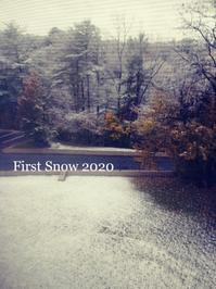 冬が来ました - NYからこんにちは