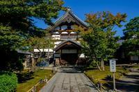 初秋の高台寺 - ぴんぼけふぉとぶろぐ2