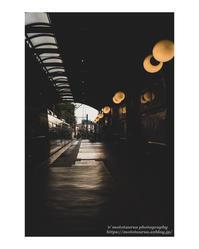 短い一日は神無月の終わり - ♉ mototaurus photography