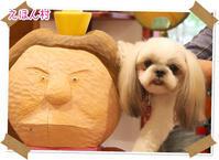2020年10月17日えほん村@八ヶ岳 - 週末は、愛犬モモと永吉、拓海とお出かけ!Kimi's Eye