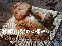 YouTubeからの~和歌山県K様より、松茸をいただきました!松茸ご飯にしちゃって♪ - くわがた散歩道