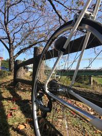 初冬の江戸川から利根川ライド - pottering