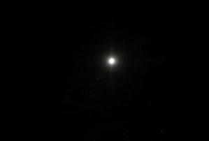 ハロウィンで満月!10月31日のお月様はブルームーンでした♪ - Natural Gardening