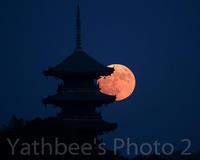 ~ 塔と満月 ~2020.10.31 - Yathbee's Photo 2