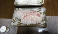 釣り人の食卓・・・2日目は鯛しゃぶ - 波止釣り放浪記 part3