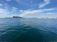小坪漁組観光遊漁船クルーズ - トコトコブログ