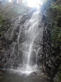 無名沢からダイラへ…ヤブコギネット・オフ会 - 山にでかける日