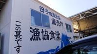 富士市「田子の浦漁協食堂」生シラス、ハーフ丼など - 白い羽☆彡の静岡県東部情報発信・・・PiPiPi♪
