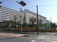 幸せな町の秋 #4 - 神奈川徒歩々旅