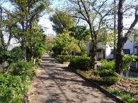 幸せな町の秋 #5 - 神奈川徒歩々旅