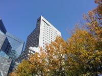幸せな町の秋 #6 - 神奈川徒歩々旅