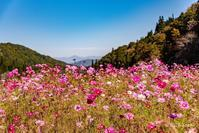天生峠から白川郷 - toshi の ならはまほろば