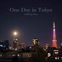 One Day in Tokyo:  満月のハロウィーンの夜に - Cucina ACCA(クチーナ・アッカ)