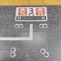 東京発、恐竜博物館@福井ツアーへ!2020.10月 - おみやげMYラブ
